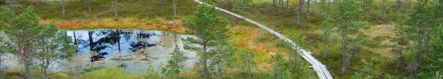 <!--:ru-->2005 — Велопоход — болота и заказники Эстонии<!--:-->