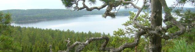 <!--:ru-->2007 — Велопоход Финляндия — Хельсинки<!--:-->